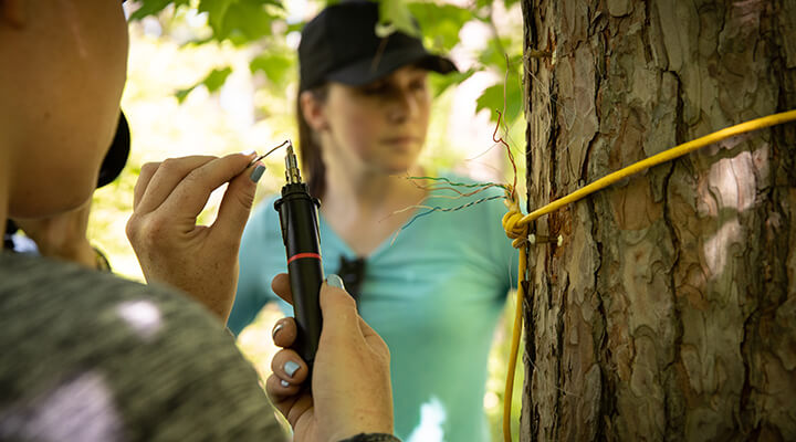 McMaster students educating being educated in the outdoors